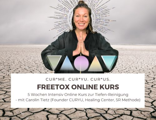 FreeTox Online Kurs + CURYU Supplements